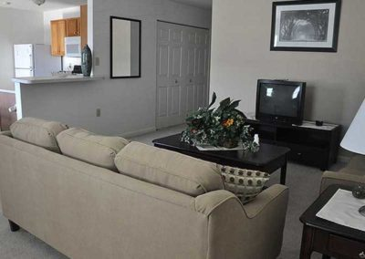 Sinking Spring apartment rental living room